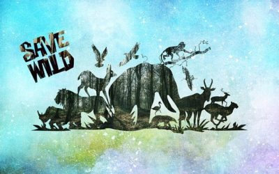 Mujhme bhi jeevan hai Hindi poetry to save animals